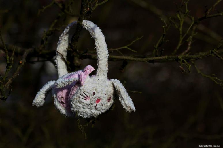 Abandoned Bunny basket