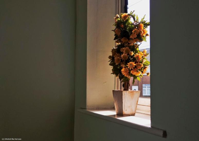 Plastic flowers (slight return)