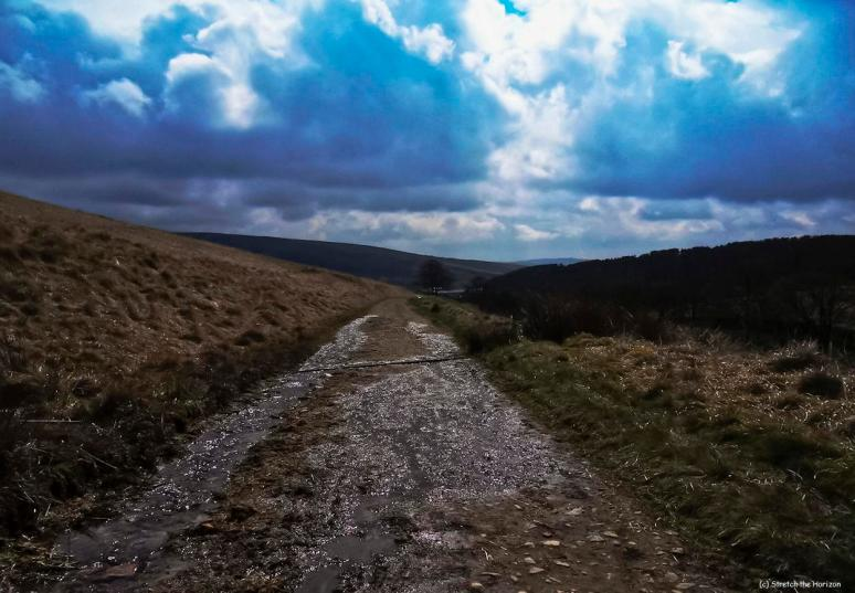 The glistening path
